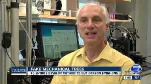 """University researchers behind new push for """"mechanical trees"""" to help capture CO2 [Video]"""