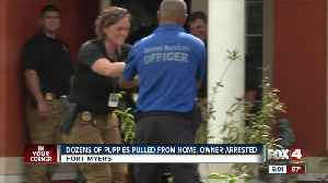 Woman arrested in animal hoarding case in Lehigh Acres [Video]