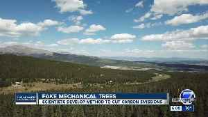 University researchers behind new push for 'mechanical trees' to help capture CO2 [Video]