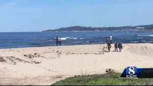 Good Samaritan jumps into action when a father and son are caught in the ocean at Monestary Beach [Video]