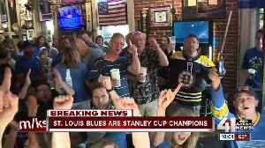 KC hockey fans gather for winner-take-all Stanley Cup Game 7 [Video]
