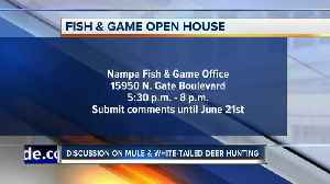Fish and Game seeking input on Mule and White-tailed deer plans [Video]