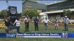 Independent Team To Determine Whether Horses Safe To Race At Santa Anita [Video]