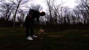 Guy trains dog to fetch his golf balls [Video]