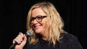 Amy Poehler bigs up female creators at Women in Film Awards [Video]