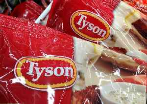 Meat Producing Giant Tyson Food Launches New Plant-Based Brand [Video]