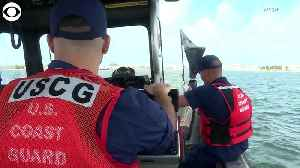 WEB EXTRA: Coast Guard Member Goes Overboard [Video]