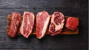 Meat Consumption Is Unsustainable For The Planet [Video]