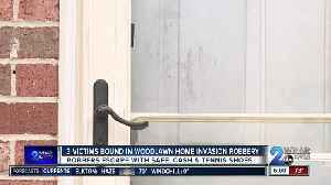 3 Victims Bound in Woodlawn Home Invasion Robbery [Video]