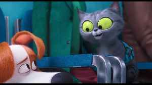 The Secret Life of Pets 2 Movie Clip - Max Meets Pets in the Vet [Video]