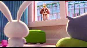 The Secret Life of Pets 2 Movie Clip - Daisy Asks for Help [Video]