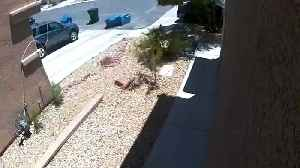 CAUGHT ON CAMERA: Trash can smashes car window on windy Las Vegas valley day (raw video) [Video]