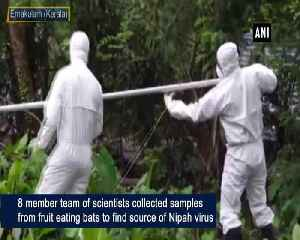 Scientists collect samples to find sources of Nipah virus in Kerala [Video]