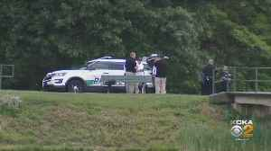 Fatal Lightning Strike Kills Two At Westmoreland Park [Video]