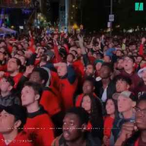 Canada Celebrates A Toronto Raptors Win [Video]