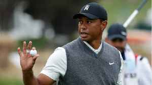 Tiger Woods Steady In U.S. Open Round 1 [Video]