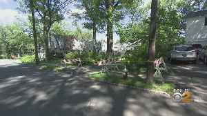 Mother, 6-Month-Old Child Injured After Tree Branch Falls [Video]