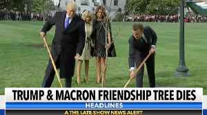 The Trump-Macron Friendship Tree Is Dead [Video]