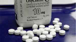 Lawyers propose nationwide opioid settlement [Video]