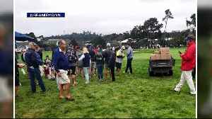 Runaway Golf Cart Injures Spectators at Pebble Beach [Video]