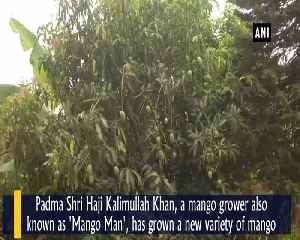 Mango Man' grows new variety named after Amit Shah [Video]