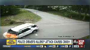Driver loses control, crashes vehicle after allergy attack, police say [Video]
