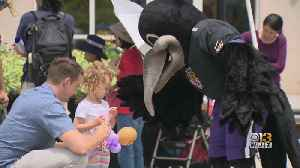 Ravens Mascot Joins Fun At Summer Reading Challenge Festival [Video]
