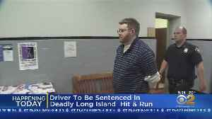 Driver Faces Sentencing In Deadly Hit-And-Run [Video]