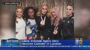 Adele Has A Blast At Spice Girls Show [Video]