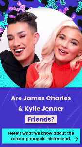 Are James Charles and Kylie Jenner Friends? [Video]