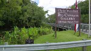 The Legend Of Florida's Skunk Ape Lives On, Deep In The Heart Of The Everglades [Video]
