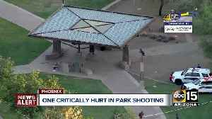 One critically hurt in park shooting [Video]