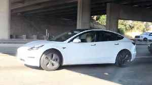 Snore-to pilot: driver spotted asleep behind wheel of tesla in rush hour traffic [Video]