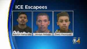 Search Is On For 3 Men Who Escaped From ICE Facility In Aurora [Video]
