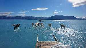 The viral image that illustrates the scale of melting ice in Greenland [Video]