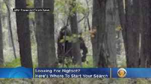 Looking For Bigfoot? Here's Where To Start Your Search [Video]