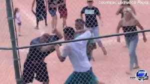 VIDEO: Fight breaks out between parents during youth baseball game in Lakewood [Video]