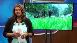 'The dog lives with them, becomes part of their family,' Indiana State Police's K9's help keep publi [Video]