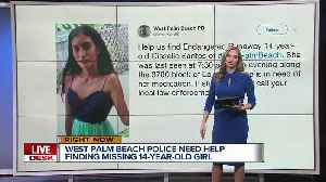 14-year-old girl missing in West Palm Beach [Video]