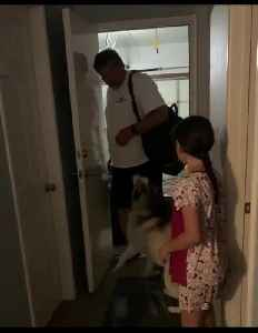 Overly-excited huskies welcome owner's return home [Video]