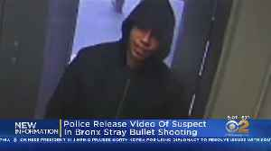 Police: Surveillance Shows Stray Bullet Suspect [Video]