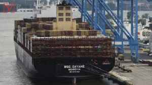 Feds Seize Over 16 Tons of Cocaine Worth $1 Billion in Philadelphia Shipping Port [Video]
