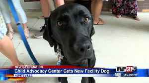 National Child Advocacy Center gets new facility dog in Huntsville [Video]