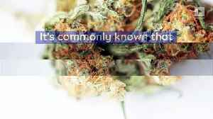 5 Surprising Psychological Effects of Weed [Video]