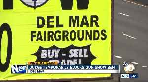Del Mar gun shows can continue for now, U.S. district court judge rules [Video]