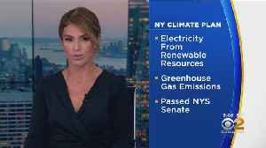 News video: New York To Pass Climate Plan