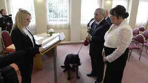 A Rottweiler acts as best man at owners wedding [Video]