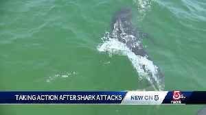 New plan to protect people from shark attacks [Video]