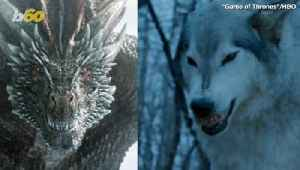 'Game Of Thrones' Writers Scrapped Amazing Fight Between '50 Direwolves And An Undead Dragon' [Video]