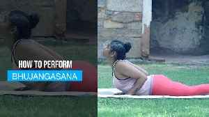 Yoga Day | Counter air pollution, fight respiratory problems with Bhujangasana [Video]
